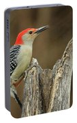 Red-belly At Stump Portable Battery Charger