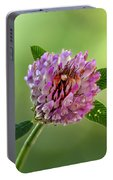 Red Clover Portable Battery Charger