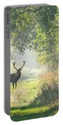 Red Deer In The Forest Portable Battery Charger