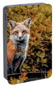 Red Fox In Fall Colors Portable Battery Charger
