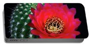 Red Hot Torch Cactus  Portable Battery Charger