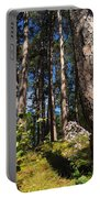 Red Pine Itasca Portable Battery Charger