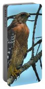Red Shouldered Hawk Panorama Portable Battery Charger