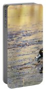 Ring Necked Duck Portable Battery Charger by Michael Chatt