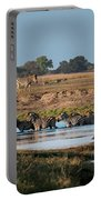 River-crossing Zebras Portable Battery Charger