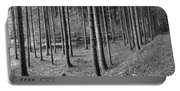 Road Passing Through Forest, Stuttgart Portable Battery Charger
