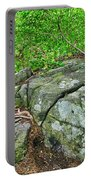 Rock On Green's Hill Portable Battery Charger