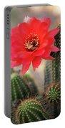 Rose Quartz Cactus Flower  Portable Battery Charger