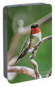 Ruby-throated Hummingbird In All His Glory Portable Battery Charger