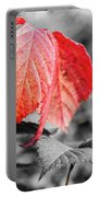 Rusty Leaves Portable Battery Charger