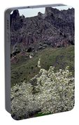 Saddle Rock And Apple Blooms Portable Battery Charger