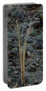 Saguaro Spines Portable Battery Charger