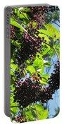 Sambucus Elderberry Sureau Portable Battery Charger