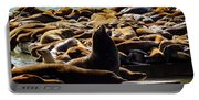 San Francisco's Pier 39 Walruses 1 Portable Battery Charger