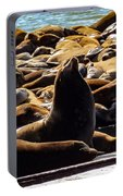 San Francisco's Pier 39 Walruses 2 Portable Battery Charger