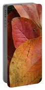Sassafras Autumn Portable Battery Charger