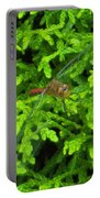 Scarlet Darter Male Dragonfly Portable Battery Charger
