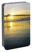 Scripps Pier Golden Sandpipers Portable Battery Charger