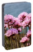 Sea Thrift Portable Battery Charger