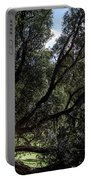 Secular Tree Portable Battery Charger