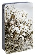 Sepia Snow Portable Battery Charger