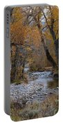 Serene Stream In Autumn Portable Battery Charger