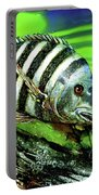 Sheepshead Lunch Portable Battery Charger