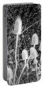 Silver Thistle Seed Pods Portable Battery Charger