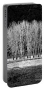 Silver Trees, Yosemite National Park Portable Battery Charger