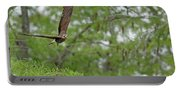 Snail Kite Takeoff Portable Battery Charger