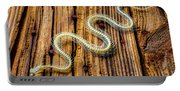 Snake Skeleton On Wooden Boards Portable Battery Charger