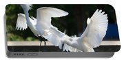 Snowy Egrets Drama Portable Battery Charger