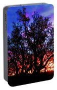 Sonoran Sunrise Ironwood Silhouette Portable Battery Charger