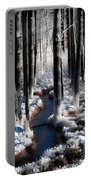 Soul Of Winter Portable Battery Charger by Karen Wiles
