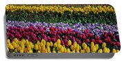 Spectacular Rows Of Colorful Tulips Portable Battery Charger