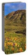 Springtime In The Desert Southwest Portable Battery Charger