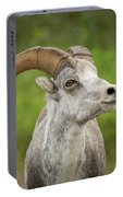 Stone's Sheep Portable Battery Charger