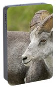 Stone's Sheep Ram Portable Battery Charger