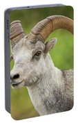 Stone's Sheep Ram Portrait Portable Battery Charger