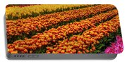 Stunning Rows Of Colorful Tulips Portable Battery Charger