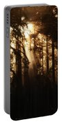 Sultry Morning Radiance Portable Battery Charger
