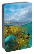 Surf Parrotfish, Damselfish And Basslet Portable Battery Charger