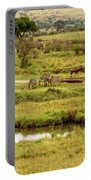 Tanzania Animal Landscape Portable Battery Charger