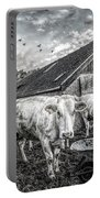 The Cows Came Home Black And White Portable Battery Charger
