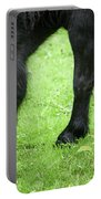 The Grass Is Greener Here. The Black Pony Portable Battery Charger