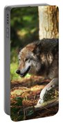 The Gray Wolf Portable Battery Charger