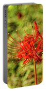 The Spider Lily Portable Battery Charger