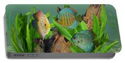 Three Discus Fish Portable Battery Charger