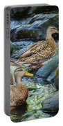 Three Mallard Ducks Swimming In A Stone Filled Brook. Portable Battery Charger