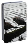 Three Seagulls On A Log Portable Battery Charger